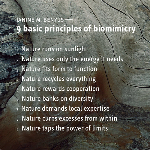 Biomimicry, by Janine M. Benyus
